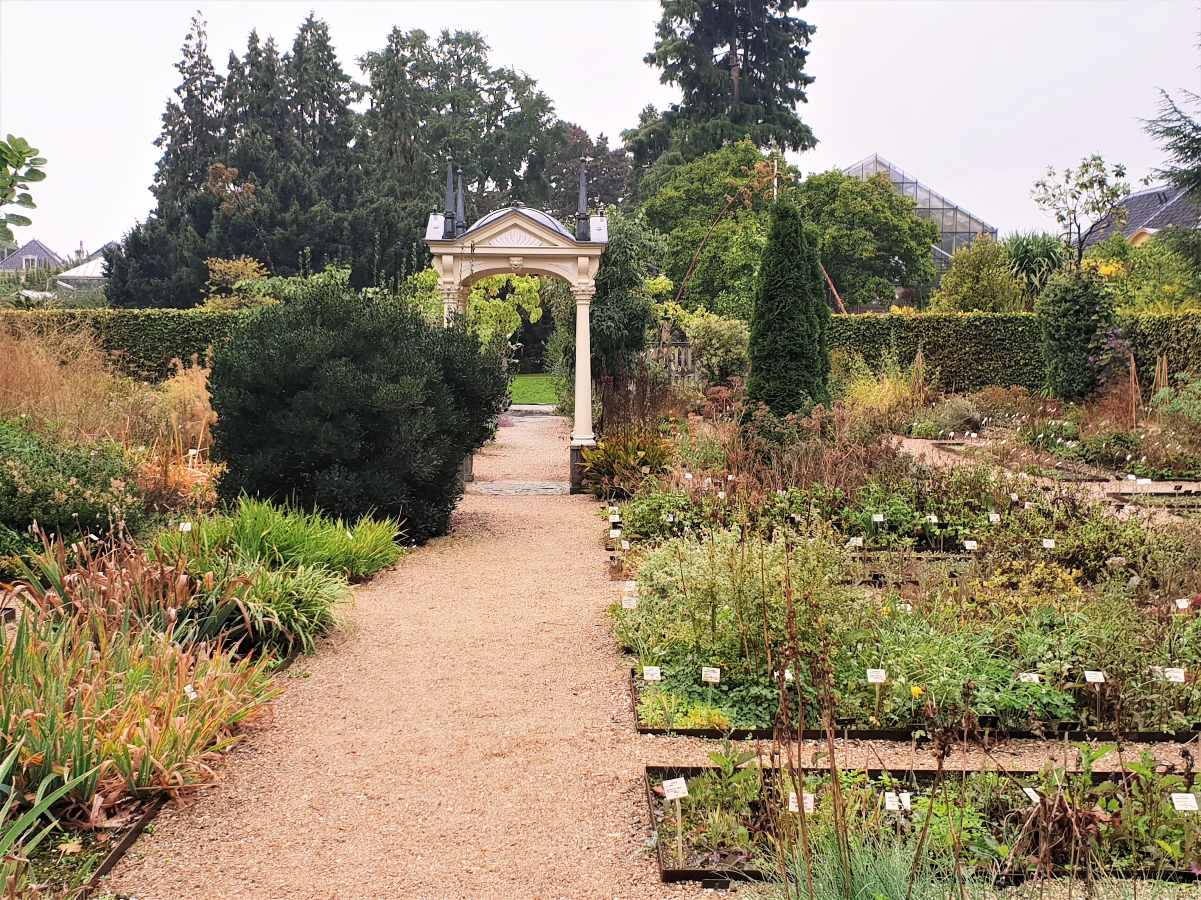 Clusius Garden, Hortus Botanicus, Leiden