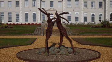 De Vere Wokefield Estate - hares in the grounds