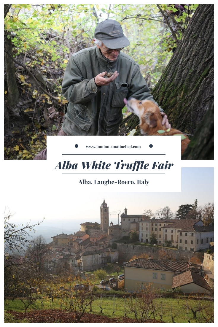 Alba White Truffle Fair