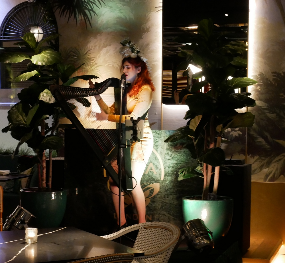 Zela Restaurant - entertainment