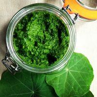 Nasturtium Pesto - The Botanical Kitchen