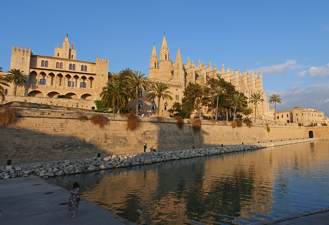 Palma Cathedral and Palace