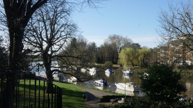River Thames From Terrace, Bingham Riverhouse
