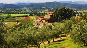 Conti di San Bonifacio wine resort, Gavorrano, Grosseto, Tuscany, Italy