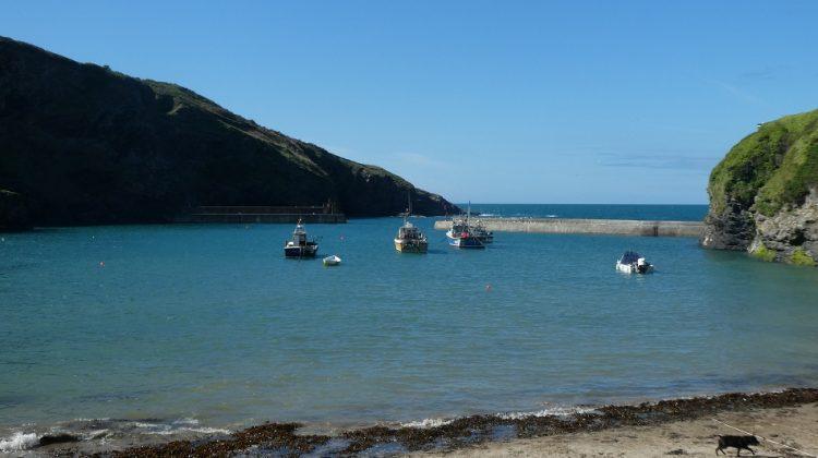 Port Isaac Cornwall - The Harbour near the Stargazy Inn
