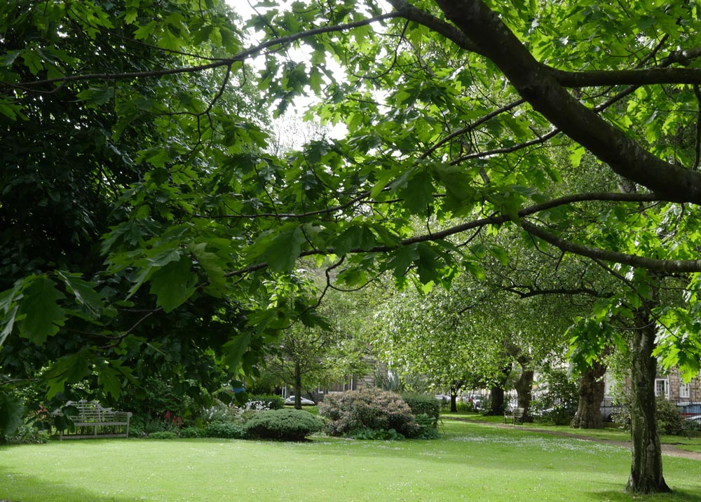 Bonham Hotel Garden Square