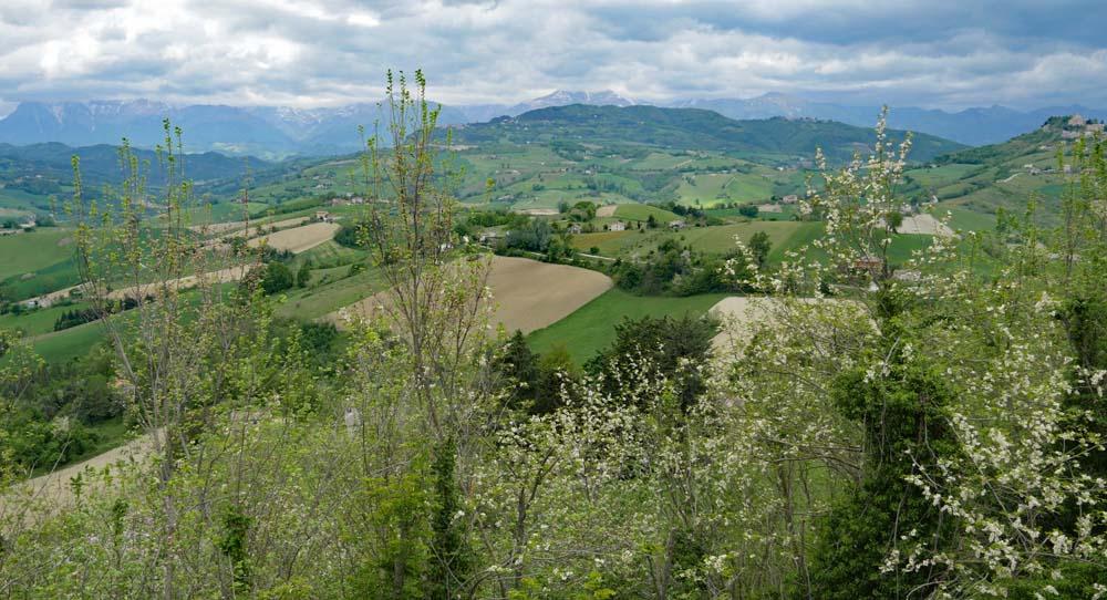 Landscape Montelparo