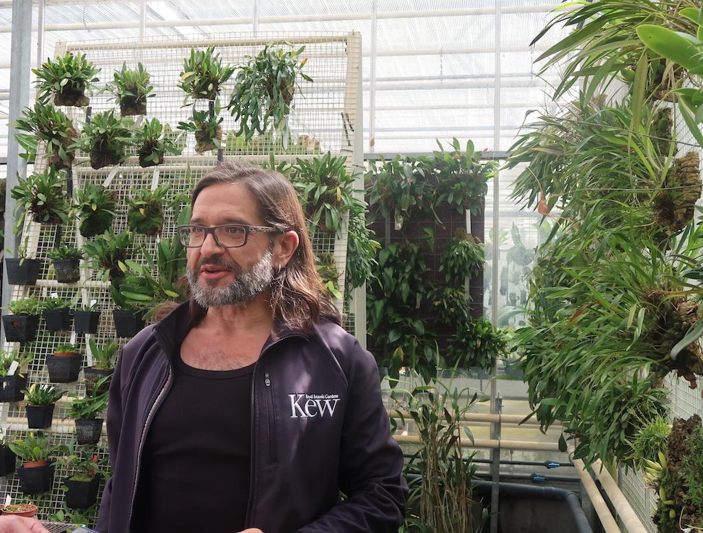 Kew Gardens -Botanical Horticulturalist, Carlos Magdalena