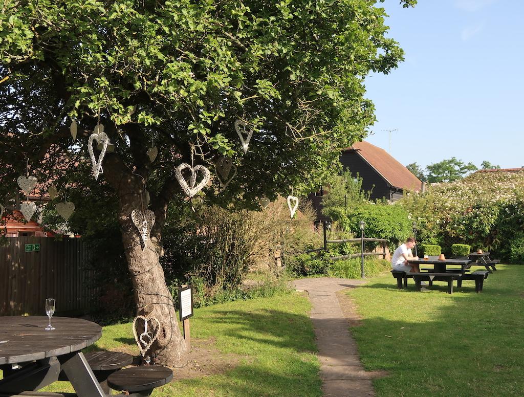 The Talbot Ripley garden