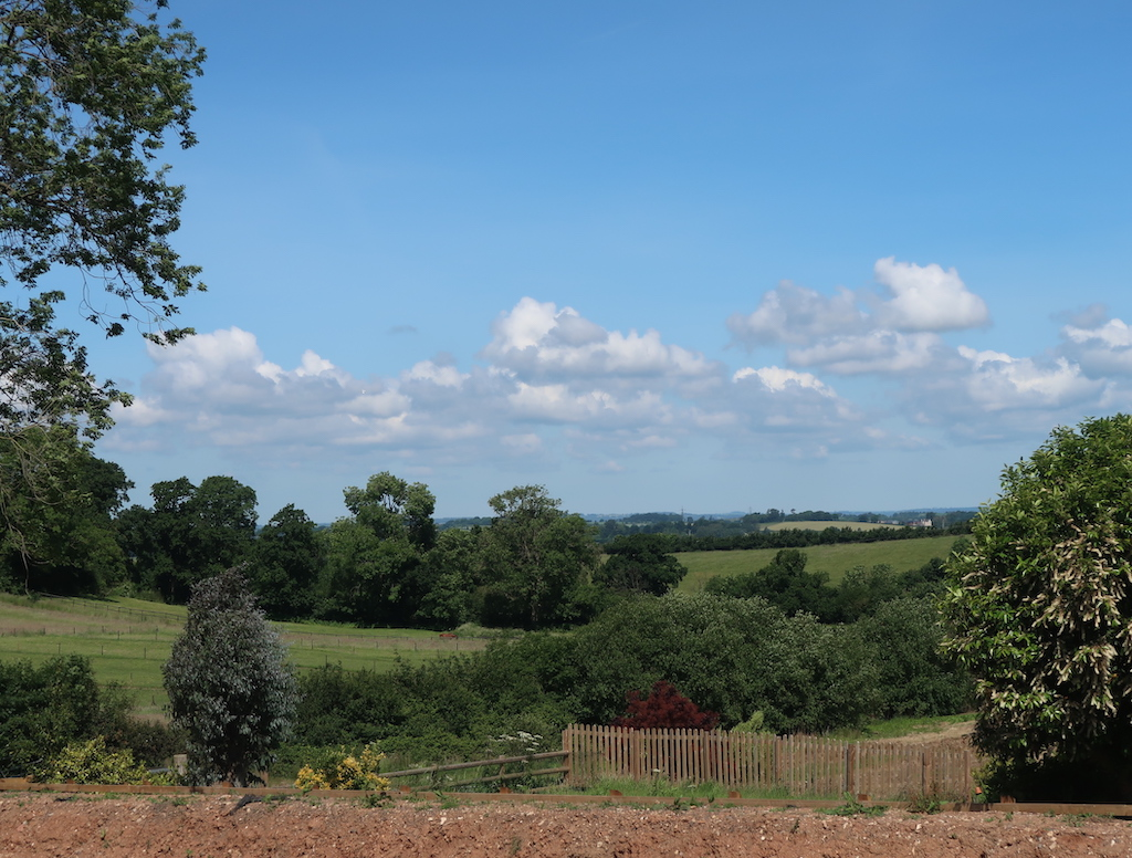 View from Wild Old Oak Barn