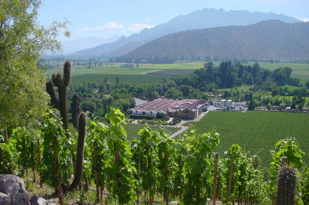 Don Maximiano Estate and Winery, Aconcagua Valley