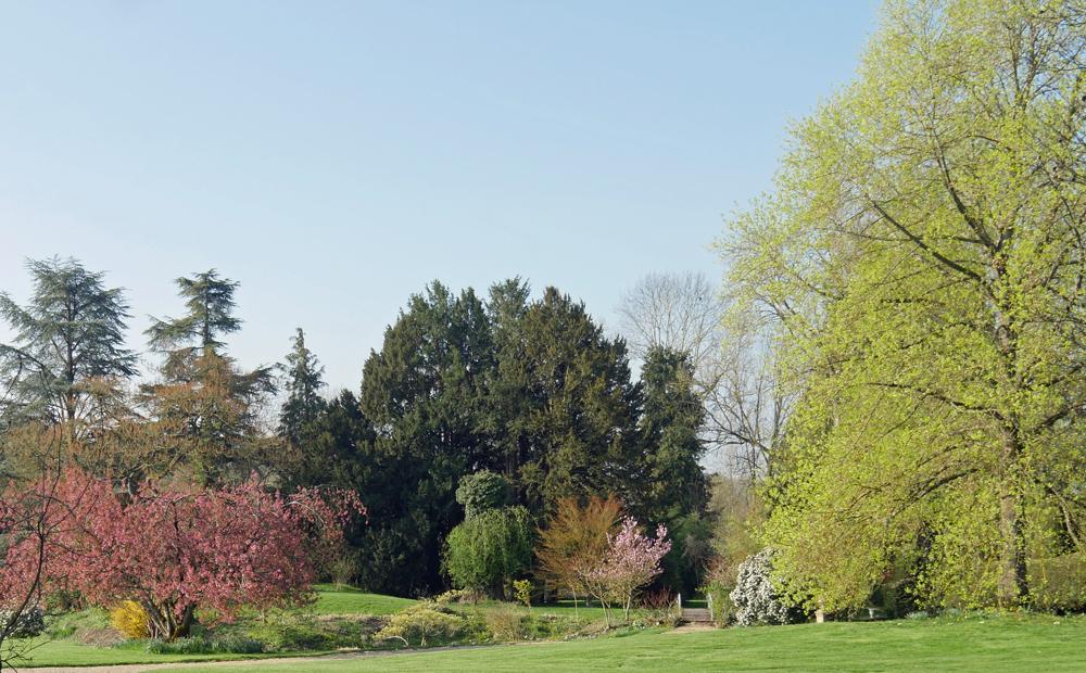 English Garden at Les Jardins de Viels Maisons