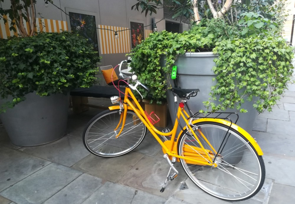 Verve Cliquot bicycle outside the Den Terrace