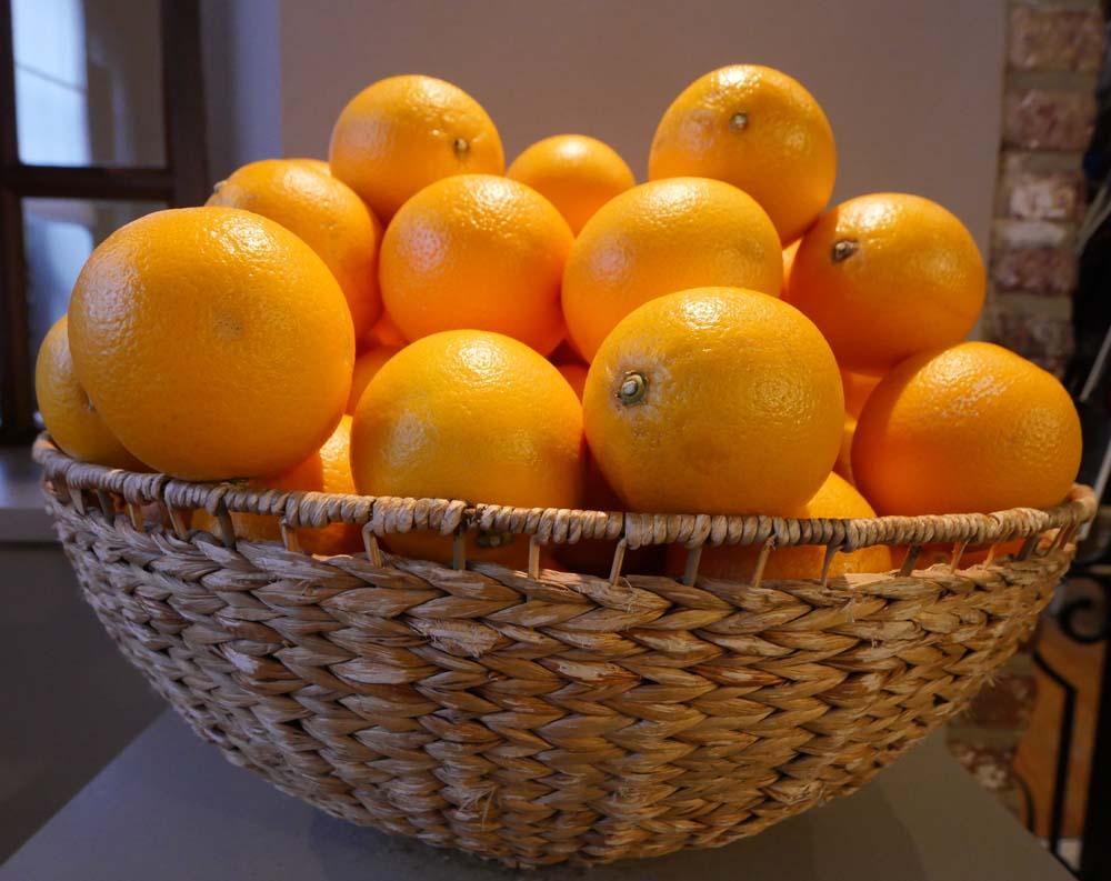 Oranges for Juicing Les Tanneurs