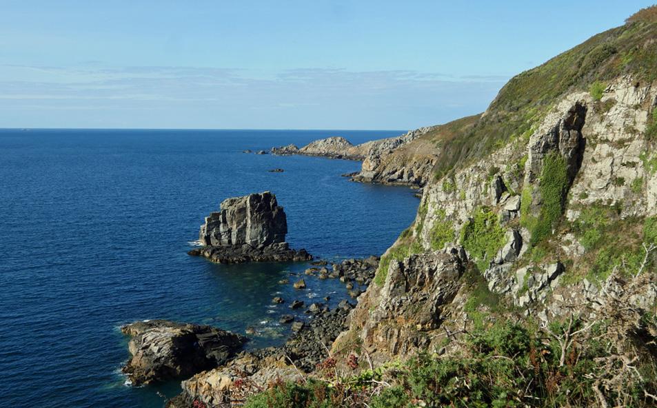 Sark - Cliffs