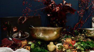 Carluccio's Mushroom Wonderland