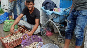 Visit Hammamet Snails for Sale - Nabeul Medina