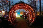 john-lewis-rooftop-winter-carnival-