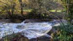 Trip to Abergavenny, The Angel - Stream