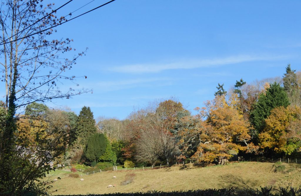 Countryside Abergavenny