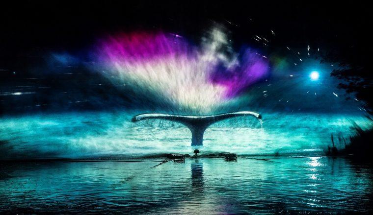 Whale light installation at Durham Lumiere