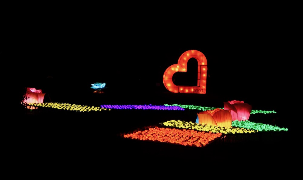 Lightopia at Chiswick House - roses and love heart