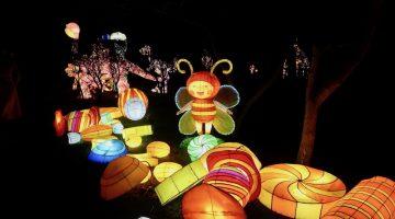 Lightopia at chiswick 2020