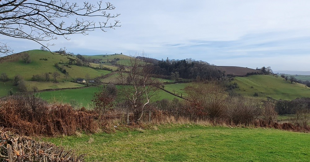 MidWales - View