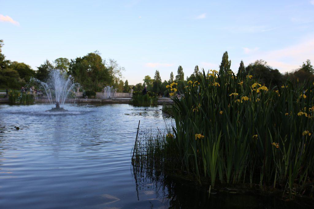 Hyde Park Photo Walk