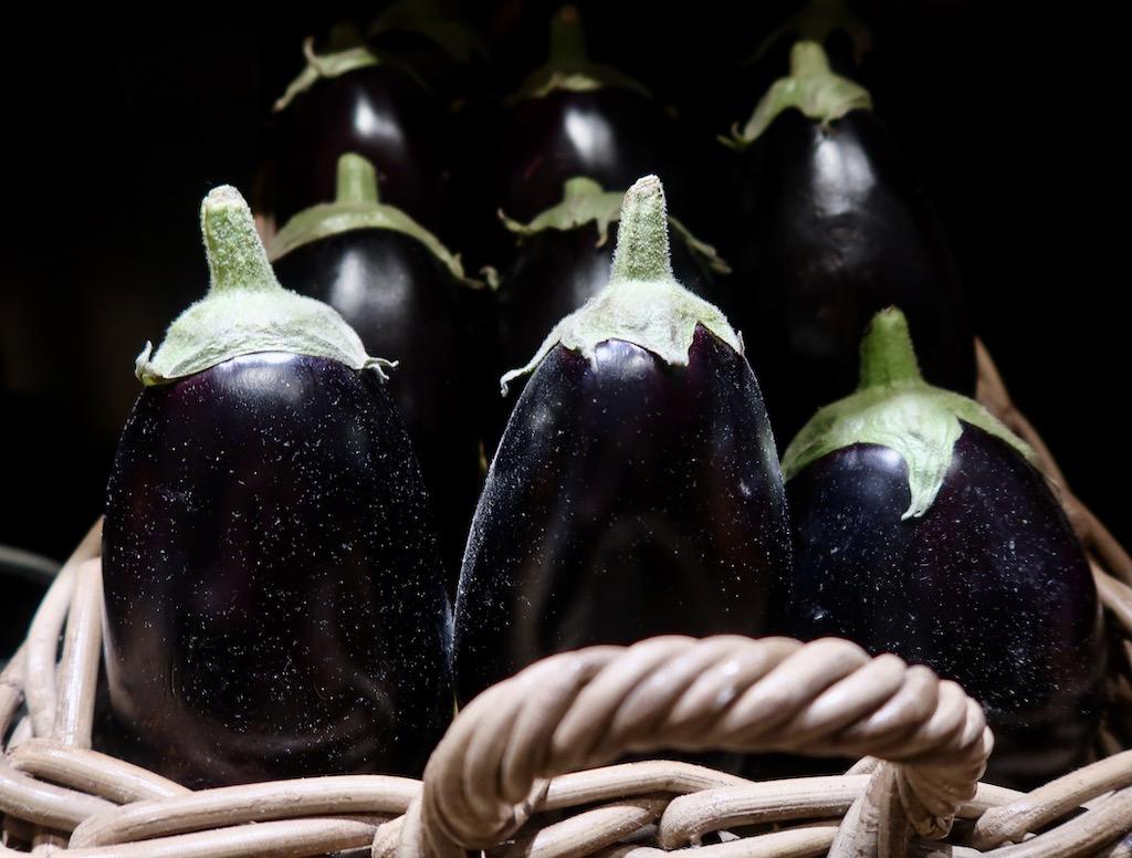 Novikov Italian - aubergines