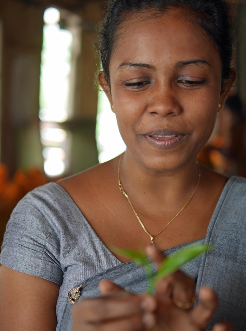 2020 Tea Sri Lanka