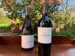 KWV Mentors Wine Range