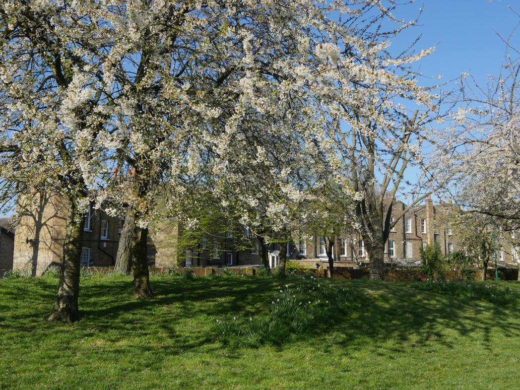 Pasley Park, Walworth London