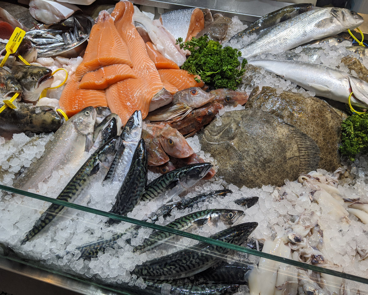 Fresh Fish at Moxons