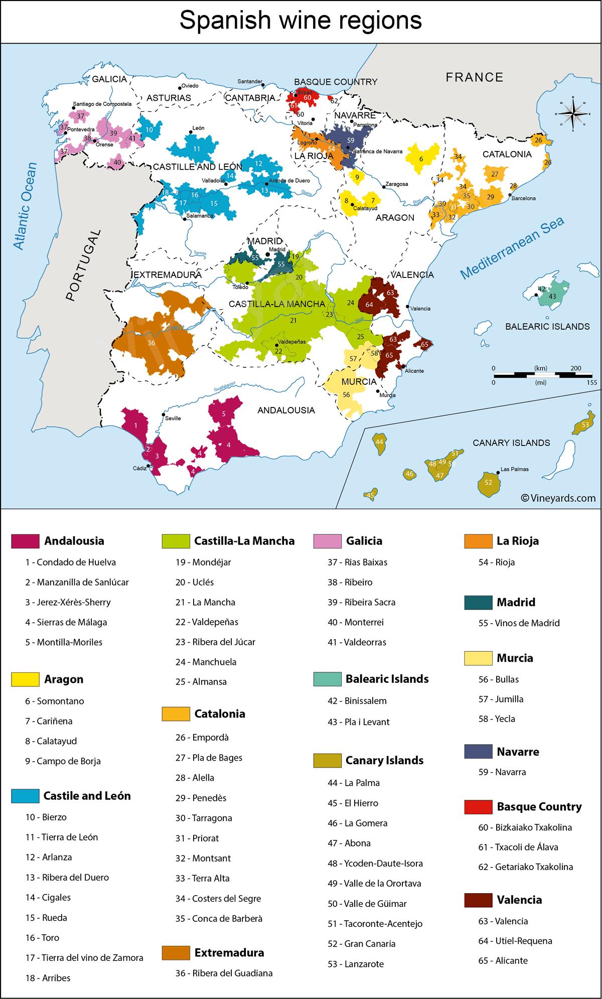 Zoom Wine Tasting of Spain