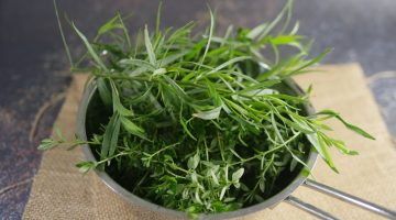 Thyme and Tarragon for Preserves