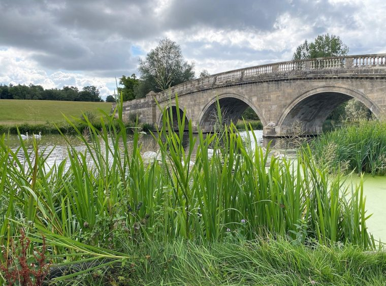 rural scene with bridge and lake at Blenheim Palace