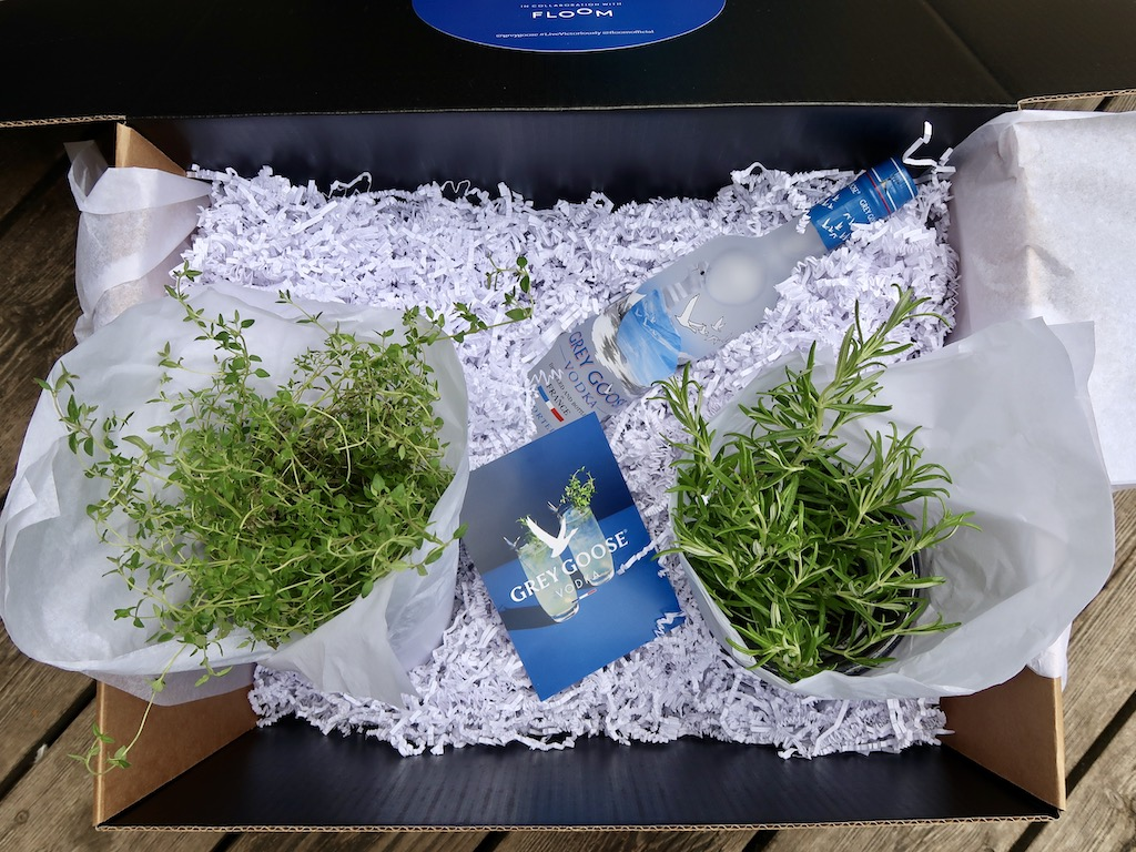 Froom & Barcardi Grow your own garnish kit 2