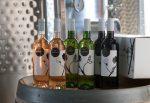Grand Mayne Wines