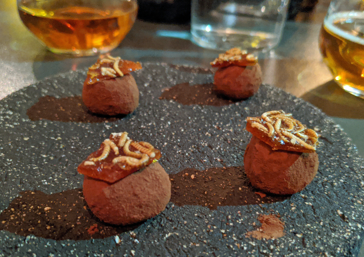Chocolate Truffles with Buffalo Worms