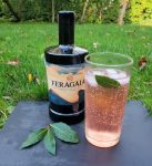 Feragaia with aromatic tonic