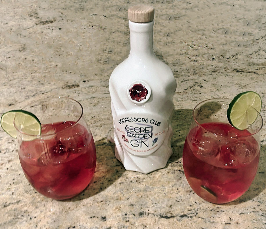 Cranberry-and-gin-cocktail 2