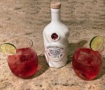 Cranberry and Gin Cocktail