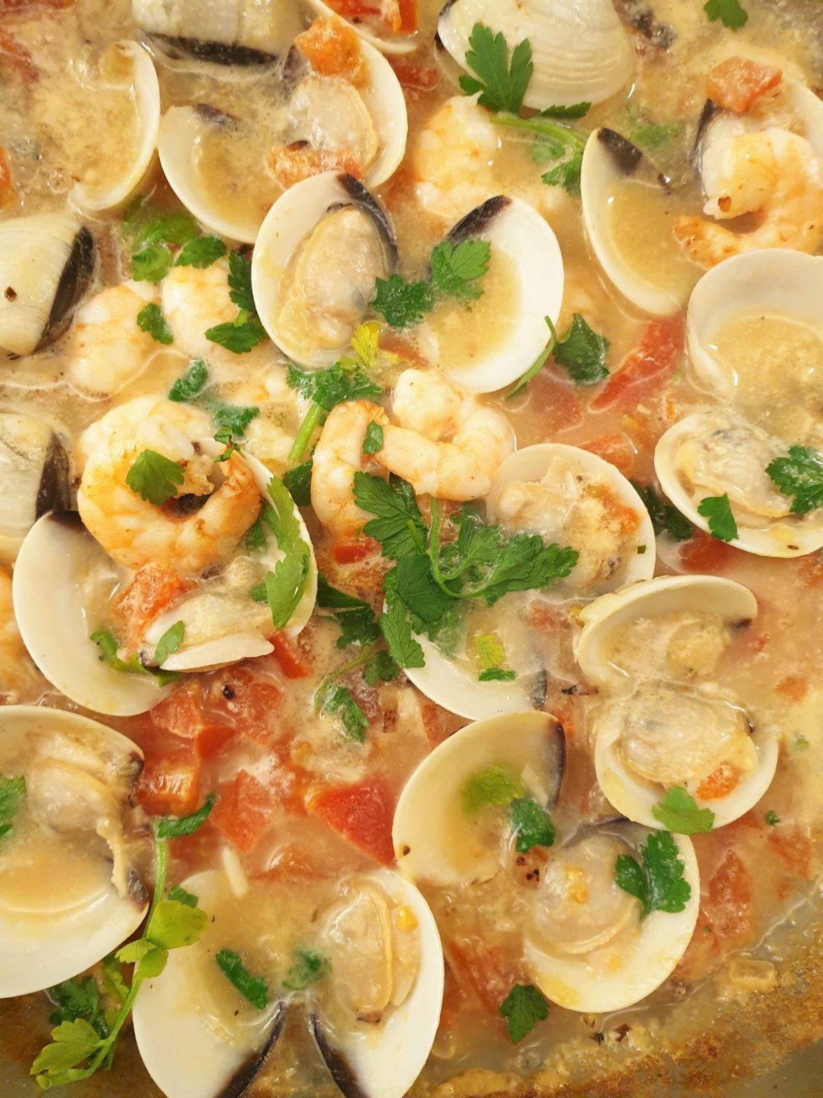 Cioppino Shellfish sauce