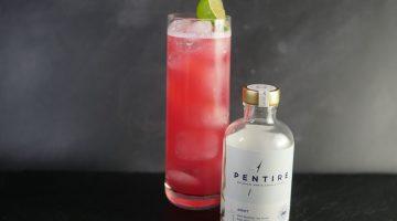 Sea Breeze Non-Alcoholic Cocktail