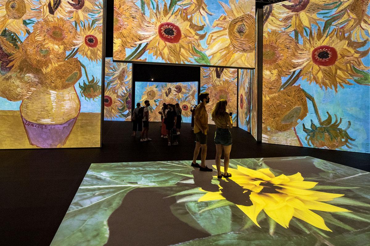 Images of sunflowers at Van Gogh Alive London - Richard Blake