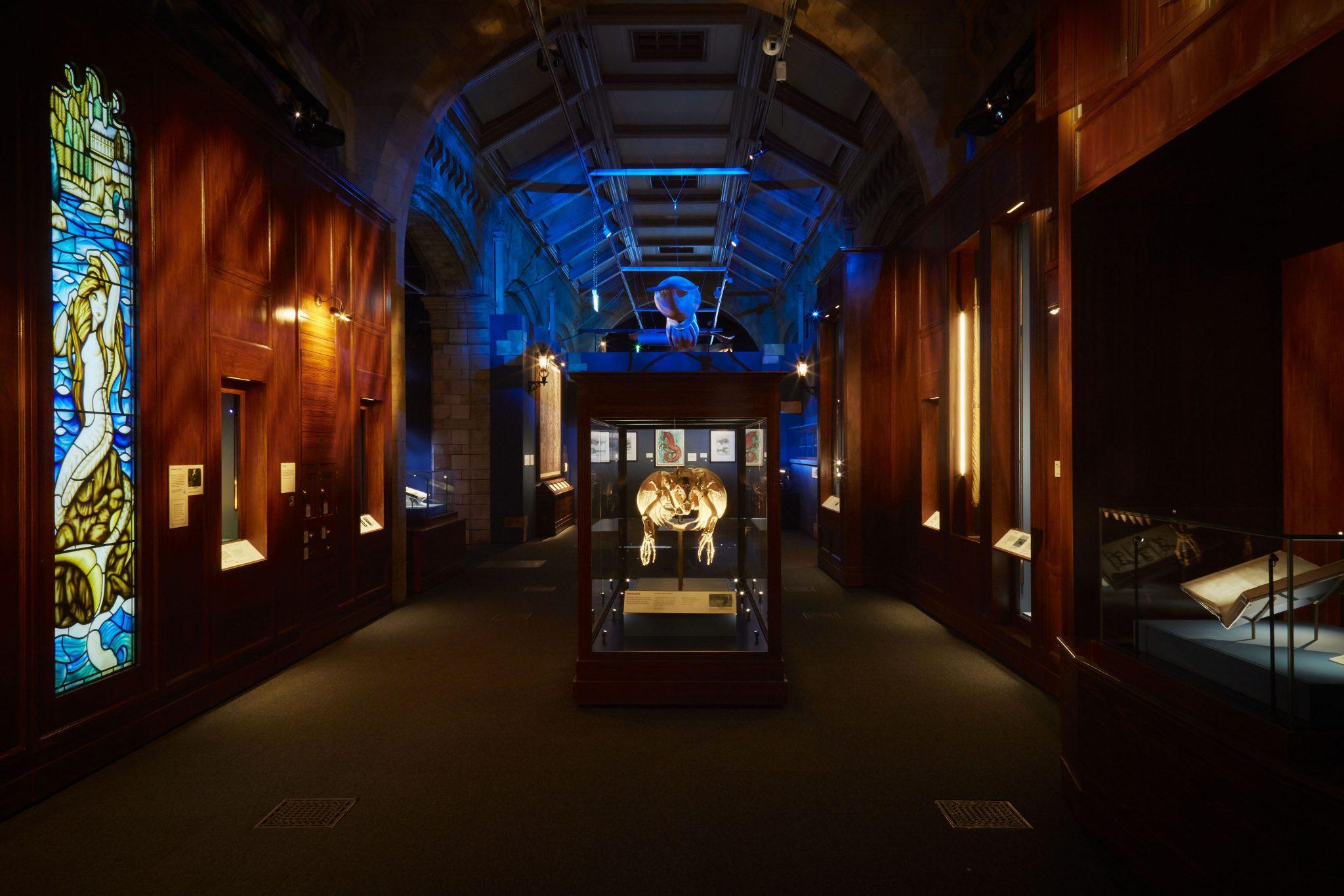 Fantastic Beasts Gallery NHM