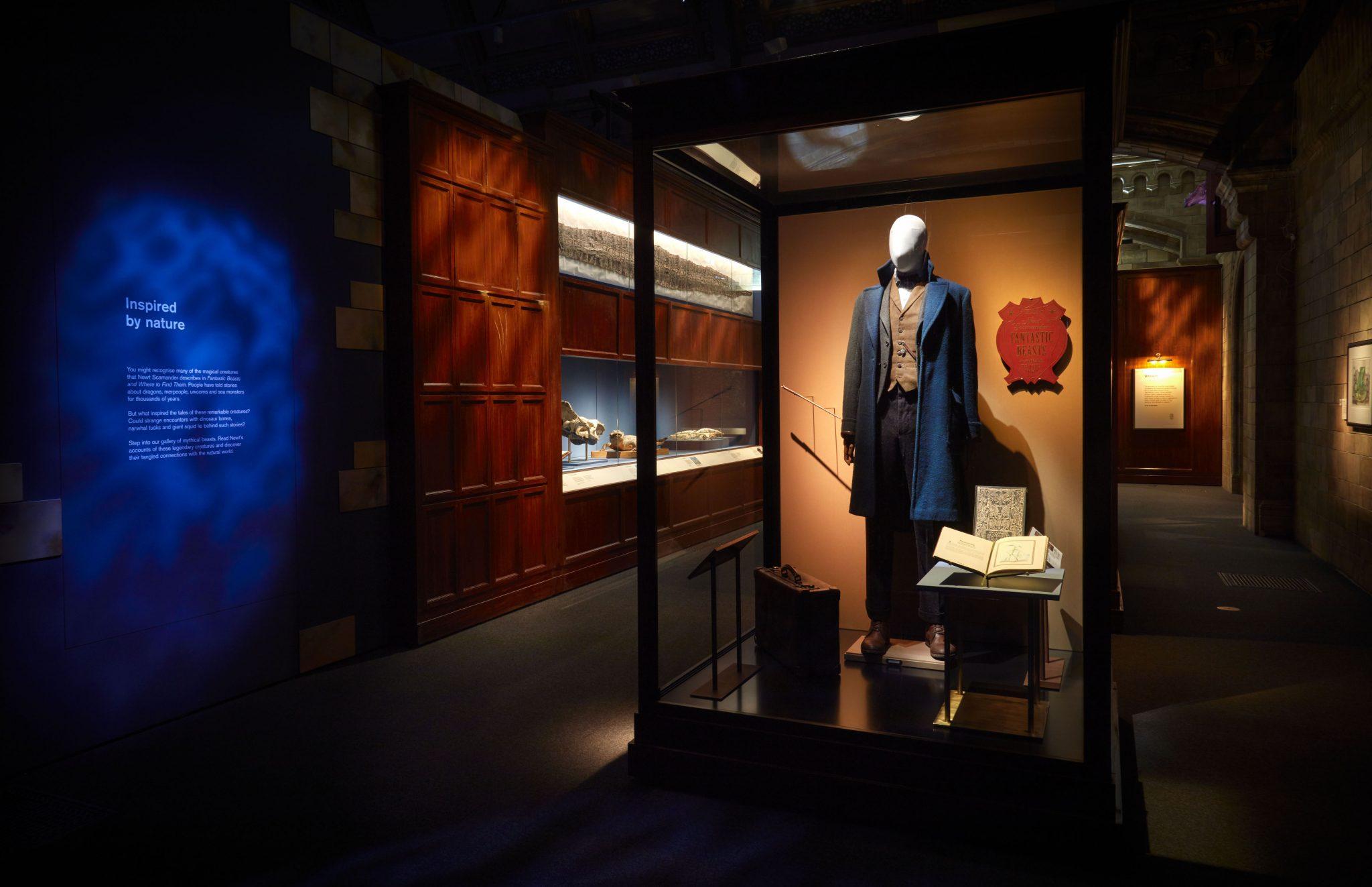 Fantastic Beasts Newt Scamander at the Natural History Museum